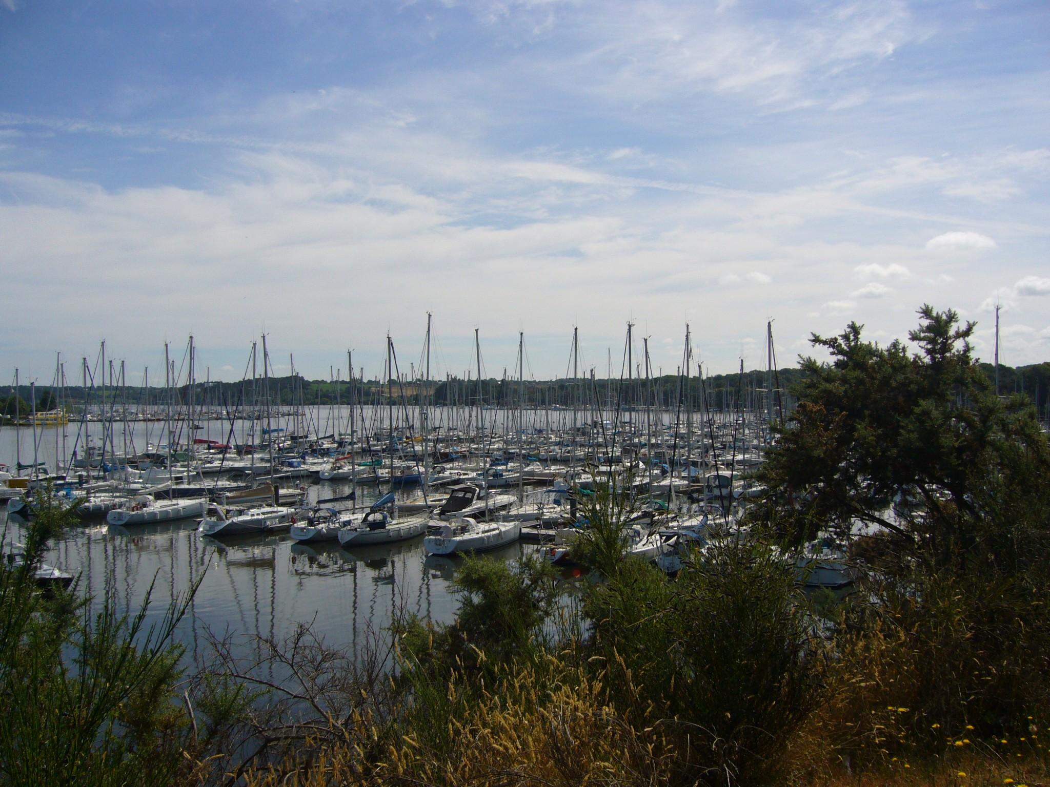 Le port vue d'en haut